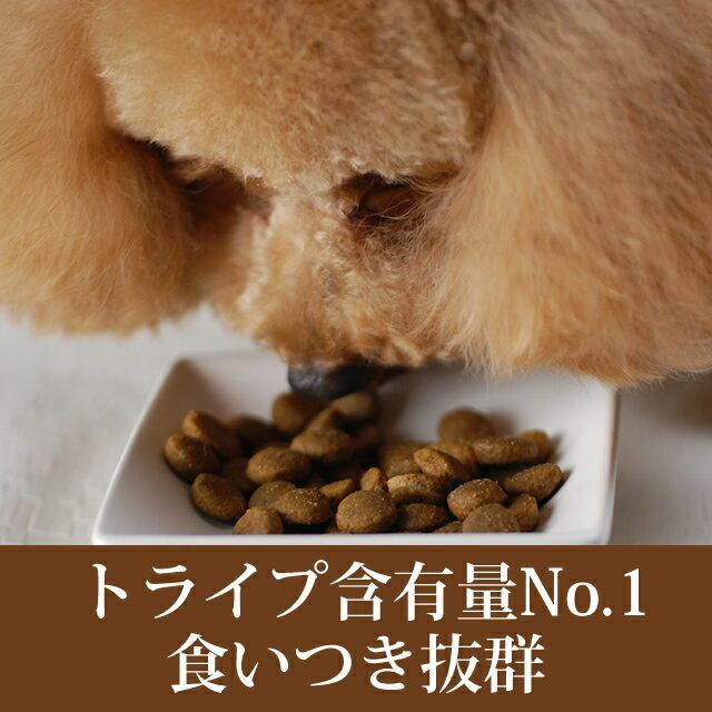 【穀物不使用の最高級フード】トライプドライバイソン(2.72kg)ドッグフードお試しサンプルグレインフリーペットフード乳酸菌消化穀物フリー高齢犬シニアフード無添加ドッグフードオメガ3犬イヌ