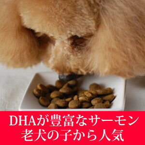 【送料無料&おまけ付】トライプドライドッグフードワイルドサーモン2.72kg2袋穀物不使用子犬グレインフリー乳酸菌穀物フリー高齢犬シニアフード無添加ドッグフード老犬オメガ3犬