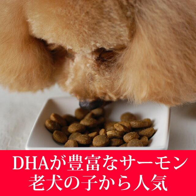 【穀物不使用の最高級フード】トライプドライワイルドサーモン(2.72kg)ドッグフードお試しサンプル子犬グレインフリー乳酸菌穀物フリー高齢犬シニアフード無添加ドッグフード老犬オメガ3犬