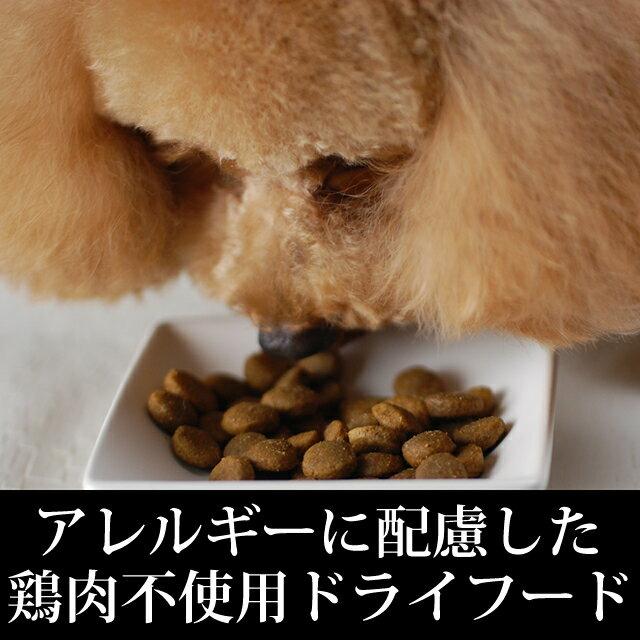 【送料無料】トライプドライドッグフードGLベニソン11.34kg穀物不使用穀物フリーわんこ犬用品ドライフードグレインフリーごはんワンコ【a0334】