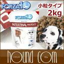Forza0011r