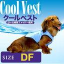 Coolvest11
