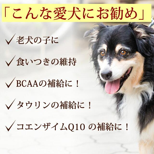 【6月限定】老犬用馬肉小分けトレーコエンザイムQ10タウリンBCAA入り3kg新鮮生馬肉に高栄養成分を加えた高齢犬や介護犬のための食事【a0300】