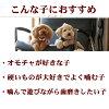 狗口臭口臭预防、 狗牙膏玩具和矢久岛岛天然木材 デンタルダンベル S、 小中型犬 / 狗牙膏木制玩具 / 上最受欢迎的牙科鞑靼玩具 5P13oct13_b