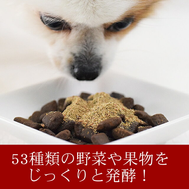 犬酵素パワー元気1kgドッグフード馬肉生肉に混ぜてペットの手作り食に子犬野菜粉末大型犬向きお得用【あす楽】トッピング、ふりかけ【a0036】