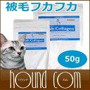 Cat-t-090754_smn