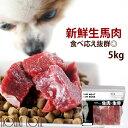犬 馬肉 生馬肉 ブロック 5kg 酵素 プロバイオティクス オメガ3補給 ペット 生肉 生食ローフードとして 中型犬 大型犬…