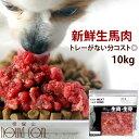 犬 馬肉 生馬肉 粗挽き 10kg 酵素 プロバイオティクス オメガ3補給 ペット 生肉 生食ローフードとして 中型犬 大型犬 …