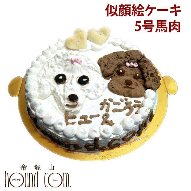 犬 似顔絵ケーキ 5号 馬肉 ペット用誕生日ケーキ 中型犬サイズ【a0194】