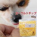 犬 おやつ 無添加 ヨーグルトチップ 50g ヨーグルトビッツ 乳酸菌 硬めのおやつ モンゴル産 犬用ヨーグルト 発酵乳 乳…
