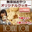 6gatu cookie01