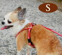 ハーネス 小型犬 ASHU ステップハーネスS トイプードル 子犬にも簡単 軽量 8の字ハーネス 抜けない ドッググッズブランドアッシュ【あす楽対応_近畿】5P13oct13_b【RCP】ハーネス 犬