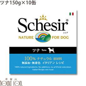 シシア Schesir ドッグ ゼリータイプ ツナ缶 10缶セット