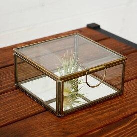 ガラスと真鍮でできた鏡付き収納ケース(Sサイズ)(63120) 【ガラスボックス ガラスケース テラリウム 容器 四角 ディスプレイケース 小物入れ 小物収納 塩系 インテリア 男前 アジアン雑貨】