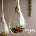 クリアガラスのハンギングケース(62110)【ハンギング テラリウム テラリウムケース 花器 エアプランツ 観葉植物 グリ…