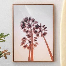 アートパネル パームツリー 植物 空 夕日 夕焼け 写真 アートフレーム 約50cm×70cm [66946]【 アートポスター キャンバスアート 壁飾り 壁掛け おしゃれ リゾート カリフォルニアスタイル ビーチスタイル サーフスタイル マリンスタイル 】