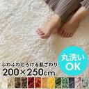 洗えるラグマット 200cm×250cm マイクロファイバーフラッフィラグカーペット[200cm×250cm]【 200×250 3畳 大きめ …