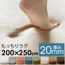 【送料無料】ラグマット ソフチェ[約200cm×250cm][床暖対応]【ラグ ラグカーペット 厚手 低反発のような 高反発 おし…