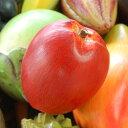 木彫りのアジアンフルーツ[リンゴ][10532]【本物そっくりバリ島のフルーツ 果物 果実 インテリア置物 アジアン置き物 木彫りのフルーツ 木製オブジェ かわ...