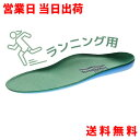 ランナー用 インソール Formthotics フォームソティックス Sport Run Dual Blue/Green【ジョギング ランニング ウォー…