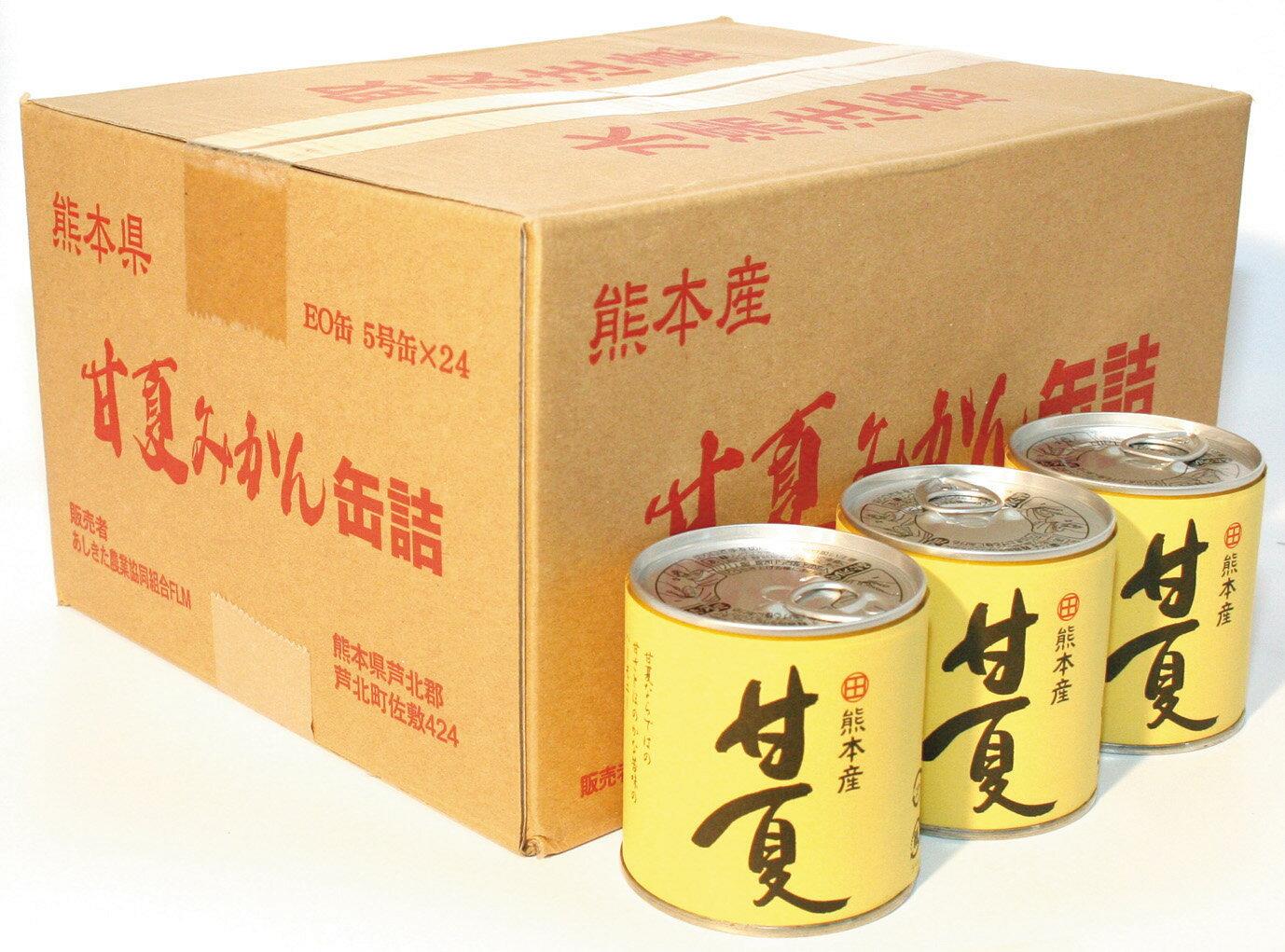 甘夏缶詰 295g×24缶