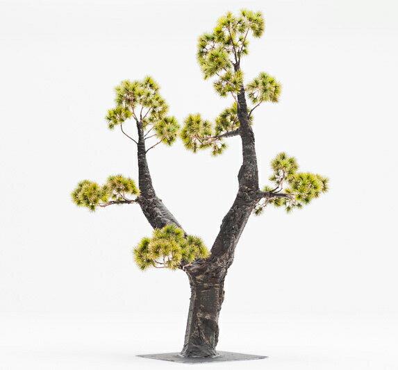 【即納】完全一点物制作品 アーティフィシャルフラワー 松の造花 高さ110cm 唐松ゴールド【7】