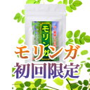 【今だけ特別50%オフ実施中♪】話題のスーパーフードモリンガ葉100%使用 モリンガ(300粒)