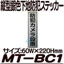 Mt bc1 main