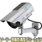 ITD-06SOL【ソーラーパネル搭載防滴型ダミ-カメラ】