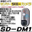 Sd dm1 main