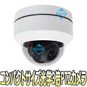 WTW-ADRP801HE【屋外軒下設置対応光学3倍220万画素AHD方式PTZドームカメラ】 【監視カメラ】 【送料無料】
