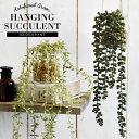 CT触媒 多肉植物 ハンギングサキュレント フェイクグリーン インテリアグリーン 観葉植物 ツル植物 ツタ 蔓 クリア 造…