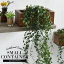 CT触媒 コンテナ小 ワイヤープランツ フェイクグリーン 木製プランター インテリアグリーン 観葉植物 ツル植物 ツタ …