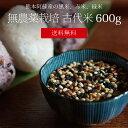 [送料無料][無農薬栽培][600g] 古代米 600g / 黒米、緑米、赤米 / 無農薬栽培 / 九州 熊本 阿蘇産 / 国産 / 雑穀 / 赤…