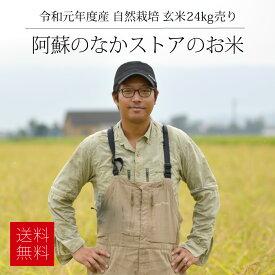 [送料無料][自然栽培米] 阿蘇のなかストアの玄米24kg / 無農薬・無施肥栽培 / 九州 熊本 阿蘇産 / ササニシキ 無農薬歴28年以上