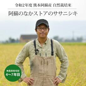 [新米] 令和2年度産 阿蘇のなかストアのササニシキ 5kg / 自然栽培 / 無農薬栽培歴4年-7年目 / 九州 熊本 阿蘇産 / 玄米・白米・分づき米