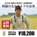 [送料無料][自然栽培米] 阿蘇のなかストアの玄米 30kg / 無農薬・無施肥栽培 / 九州 熊本 阿蘇産 / ササニシキ、森のくまさん / 29年度産