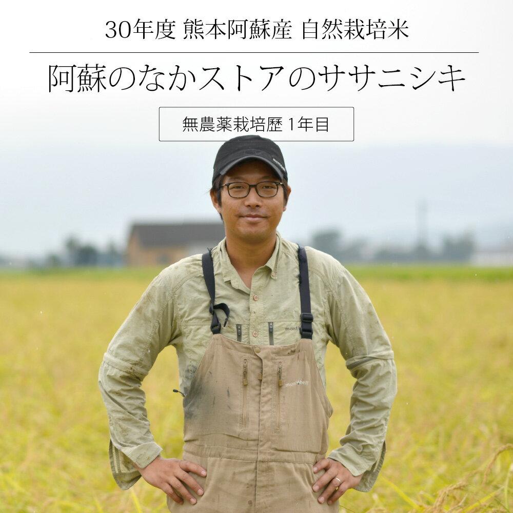 [セール][30年度産 自然栽培米] 阿蘇のなかストアのお米 ササニシキ 5kg / 無農薬栽培歴1年目 / 九州 熊本 阿蘇産 / 玄米・白米・分づき米 / 脱酸素剤