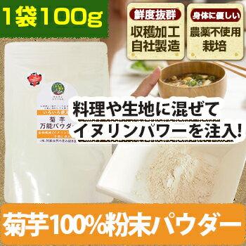 キクイモ 菊芋パウダー 万能 粉末 100g 1袋 きく芋 きくいも