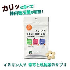 943939dd50f43 菊芋 サプリ キクイモ 水溶性食物繊維 フェカリス菌 イヌリン入り 菊芋と乳酸菌の小粒