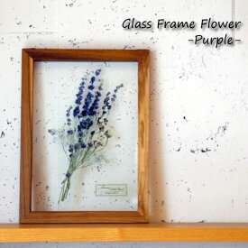 【ポイント最大34倍!26日1:59まで】Glass Frame Flower -purple- パープル フレーム アート 植物 フラワー 花 パネル アンティーク 雑貨 インテリア オブジェ 壁掛け おしゃれ ガラス ウッド