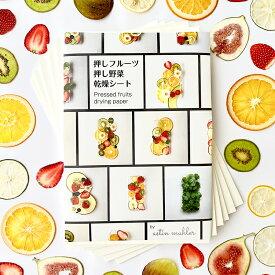 【送料無料】押しフルーツ 押し野菜 押し花 乾燥シート 3mm 6枚入り ドライフラワー 押し花 押しフルーツ 乾燥材 乾燥シート シリカゲルシート