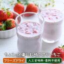 【数量限定】ちょこっと楽しむザク切りいちご(6食)化学調味料無添加 人工甘味料・香料不使用 いちごミルク 牛乳でつ…