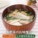 【新発売・数量限定】春野菜のお味噌汁 3食 フリーズドライ アスザックフーズ