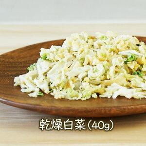 乾燥野菜 乾燥白菜(ドライ白菜)(40g) フリーズドライ 乾燥食品のアスザックフーズ