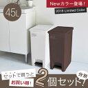 ゴミ箱 ごみ箱 エバン ペダル 45L SD スリム 【2個セット】