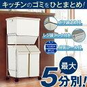 ゴミ箱 ごみ箱N分別 ワゴンペール 60L