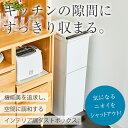 ゴミ箱 ごみ箱 ダストボックス【あす楽】分別 ダストボックスペダル 2段 スリム 38L