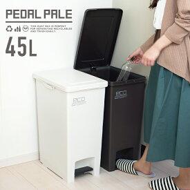 ゴミ箱 エバン ペダル 45L SD スリム 【 ごみ箱 おしゃれ 45リットル スリム ペダル 縦型 キッチン 分別 アスベル ASVEL 】
