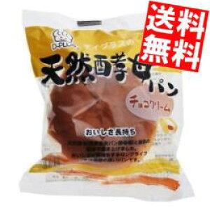 【送料無料】D-plusデイプラス天然酵母パン チョコクリーム12個入※北海道800円・東北400円の別途送料加算